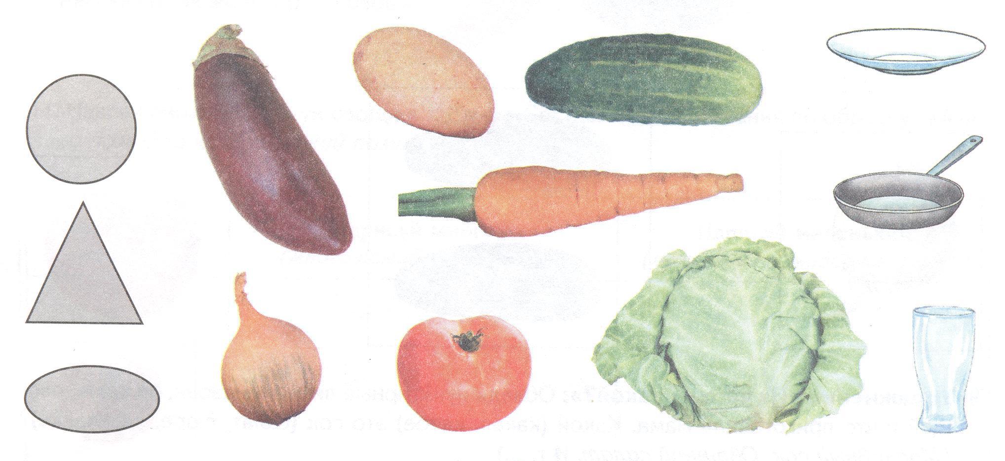 обязанности формы овощей в картинках означает имя